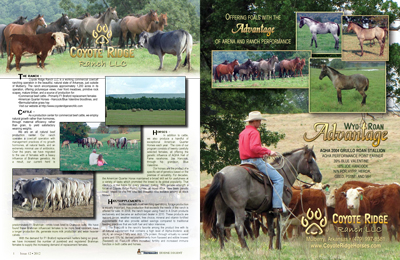 Featured ranch in the Performance Horse Digest Dec 2012 issue